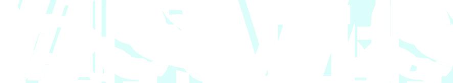 visuals logo8